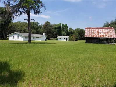 2601 Dever Moody Road, Valrico, FL 33596 - #: T3182965