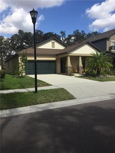 14212 Blue Dasher Drive, Riverview, FL 33569 - #: T3183199
