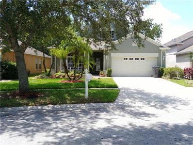 2113 Brandon Park Circle, Brandon, FL 33510 - #: T3183274