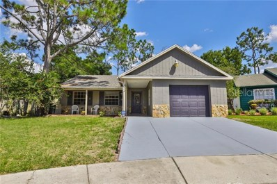 4624 S Country Hills Court, Plant City, FL 33566 - #: T3183327