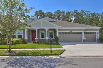 21930 Butterfly Kiss Drive, Land O Lakes, FL 34637 - #: T3183557