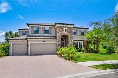 19404 Whispering Brook Drive, Tampa, FL 33647 - MLS#: T3183909
