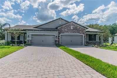 19325 Hawk Valley Drive, Tampa, FL 33647 - MLS#: T3184308