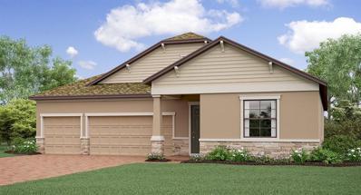 11710 Navajo Sandstone Street, Riverview, FL 33579 - #: T3184392
