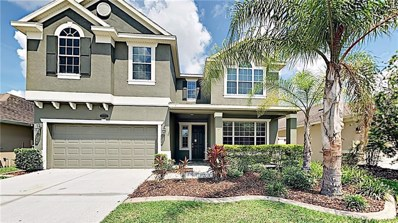20208 Natures Spirit Drive, Tampa, FL 33647 - MLS#: T3184860