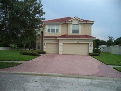 12831 Darby Ridge Drive, Tampa, FL 33624 - MLS#: T3184925