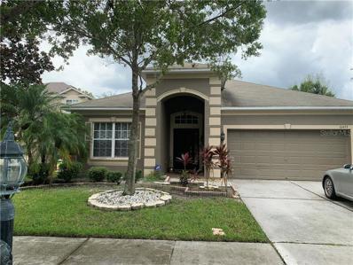 10493 Lucaya Drive, Tampa, FL 33647 - #: T3185428
