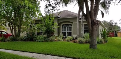 306 Carriage Oak Place, Seffner, FL 33584 - #: T3185706