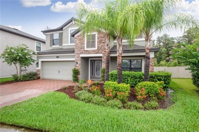 19554 Whispering Brook Drive, Tampa, FL 33647 - MLS#: T3186161