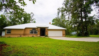24030 Tamber Road, Brooksville, FL 34602 - MLS#: T3186553