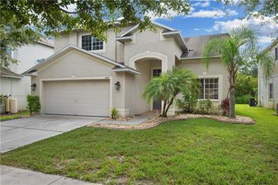 4845 Barchetta Drive, Land O Lakes, FL 34639 - #: T3186619