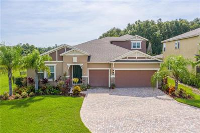 19431 Butterwood Lane, Lutz, FL 33558 - #: T3187686