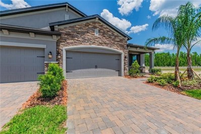 19356 Hawk Valley Drive, Tampa, FL 33647 - MLS#: T3188476
