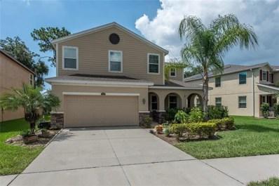10411 Riverdale Rise Drive, Riverview, FL 33578 - #: T3189335