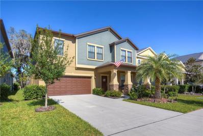 14216 Blue Dasher Drive, Riverview, FL 33569 - #: T3189431