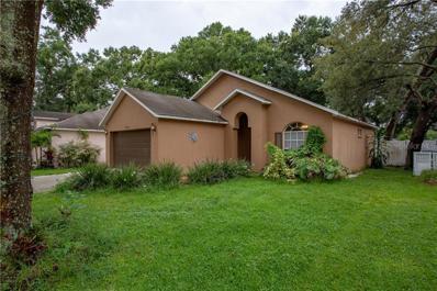 8720 Busch Oaks Street, Tampa, FL 33617 - MLS#: T3190935