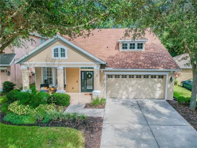 6303 Sea Lavender Lane, Tampa, FL 33625 - #: T3191386