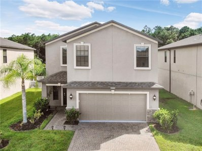20006 Date Palm Way, Tampa, FL 33647 - MLS#: T3191536