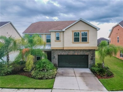 19229 Pepper Grass Drive, Tampa, FL 33647 - MLS#: T3191634