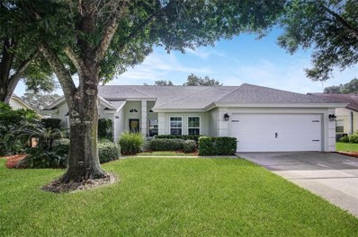 10308 Rainbridge Drive, Riverview, FL 33569 - #: T3193109