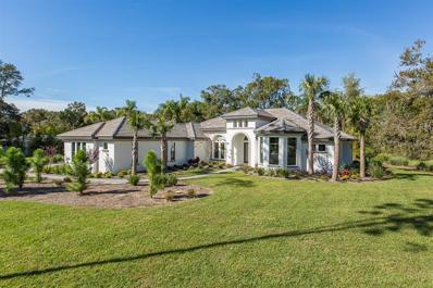 17022 Midas Lane, Lutz, FL 33549 - #: T3193242