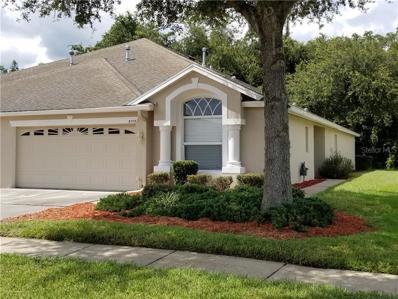 31113 Whitlock Drive, Wesley Chapel, FL 33543 - MLS#: T3193830