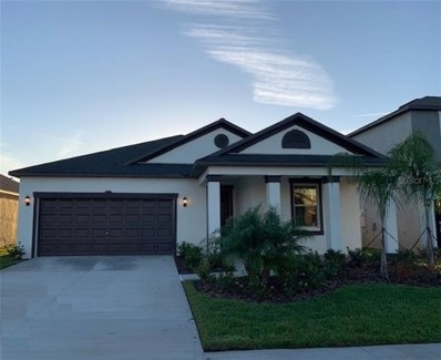 11854 Sunburst Marble Road, Riverview, FL 33579 - #: T3193982