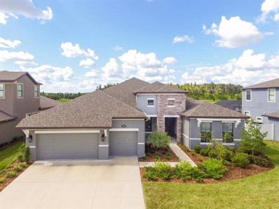 10628 Mistflower Lane, Tampa, FL 33647 - MLS#: T3194365