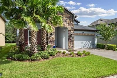 4446 Vermillion Sky Drive, Wesley Chapel, FL 33544 - #: T3195890