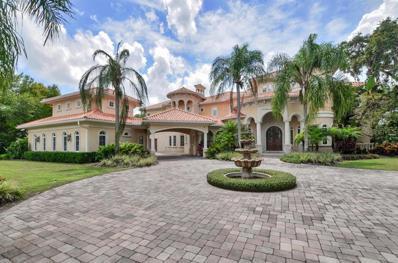 16218 Sierra De Avila Drive, Tampa, FL 33613 - #: T3196435