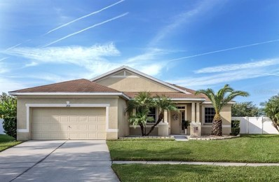 11014 Holly Cone Drive, Riverview, FL 33569 - #: T3197081