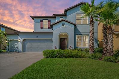 4522 Scarlet Loop, Wesley Chapel, FL 33544 - #: T3197178