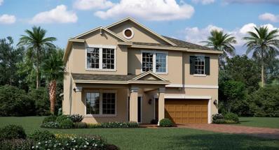 1776 Black Maple Place, Ocoee, FL 34761 - MLS#: T3198081
