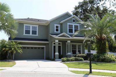 13303 Tiger Lilly Lane, Tampa, FL 33625 - #: T3199831