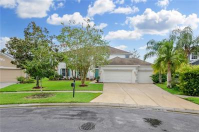 26834 Shoregrass Drive, Wesley Chapel, FL 33544 - #: T3200351