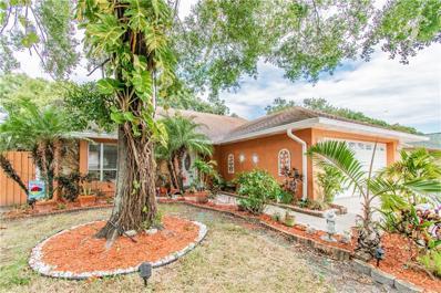 7243 Hollowell Drive, Tampa, FL 33634 - MLS#: T3200436