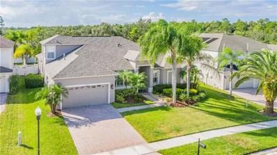 16308 Royal Park Court, Tampa, FL 33647 - #: T3200486
