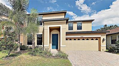 15234 Anguilla Isle Avenue, Tampa, FL 33647 - #: T3201779