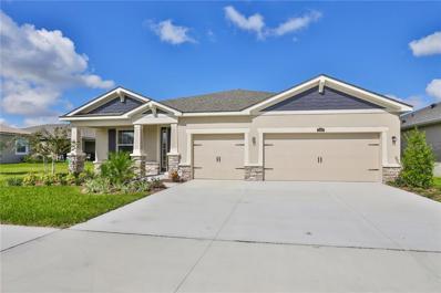 13409 Nimble Minke Place UNIT 161, Riverview, FL 33579 - #: T3201830