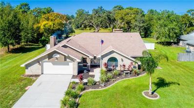 4009 Black Oak Trail, Brooksville, FL 34604 - #: T3204103
