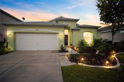 11230 Madison Park Drive, Tampa, FL 33625 - MLS#: T3204414