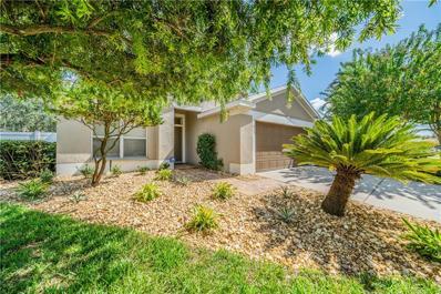 11913 Autumn Creek Drive, Riverview, FL 33569 - MLS#: T3204904