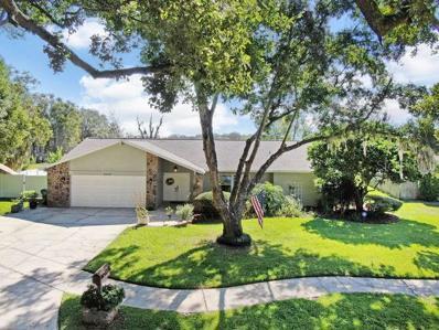 15517 Wetstone Drive, Tampa, FL 33613 - #: T3205035