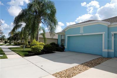 11520 Captiva Kay Drive, Riverview, FL 33569 - MLS#: T3205818