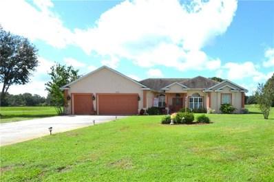 3735 Alafia Creek Street, Plant City, FL 33567 - #: T3206069