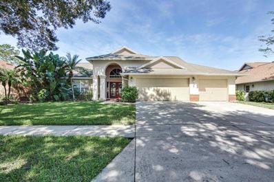 8704 Ballantrae Way, Tampa, FL 33647 - MLS#: T3206586