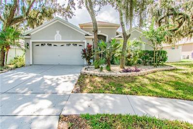 11149 Bridgecreek Drive, Riverview, FL 33569 - MLS#: T3207480