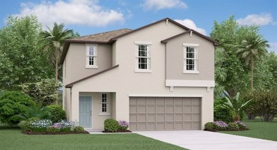 10436 Carloway Hills Drive, Wimauma, FL 33598 - #: T3209063