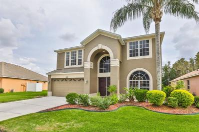 18307 Cypress Haven Drive, Tampa, FL 33647 - MLS#: T3209098