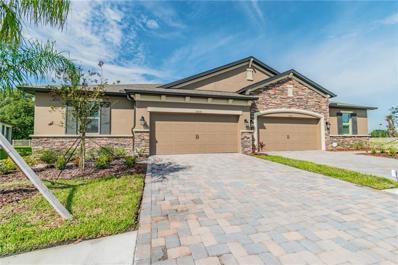 19319 Hawk Valley Drive, Tampa, FL 33647 - MLS#: T3209909